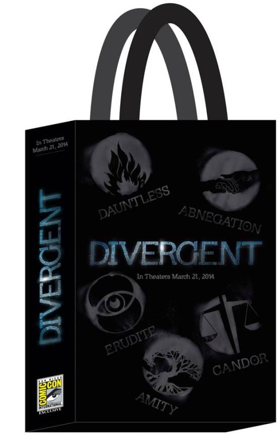 DIVERGENT Poster Bag - Summit Booth